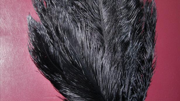 """24"""" Black Ostrich Feathers (dozen)"""