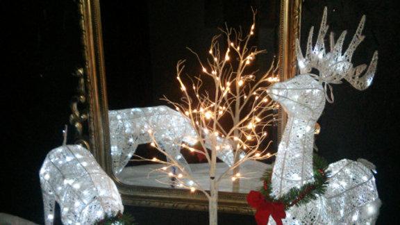 Light up Deer Display (set up)