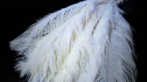 """24"""" White Ostrich Feathers (dozen)"""
