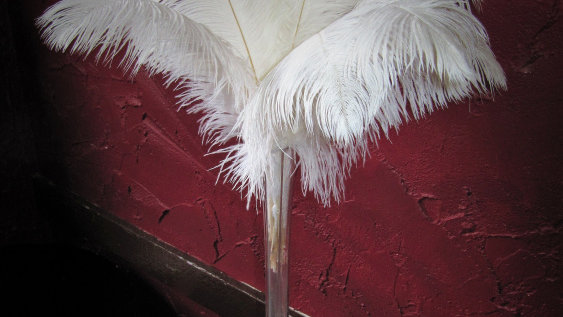 Ostrich Feather Table Centrepiece
