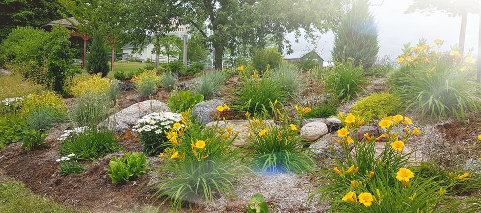 Hillside Garden Summer