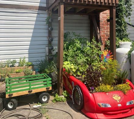 Rainbow Garden Challenge 2021 Winner
