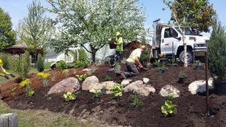 Work in progress-CHS Hillside Garden