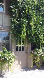 Botanical Entrance