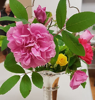 Collection of Roses -Cowan Winner 2019.j