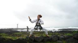 Training in Korea