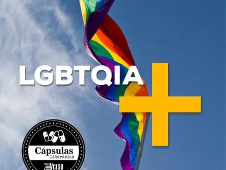 Dia Internacional do Orgulho Gay