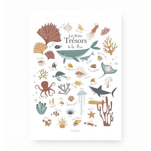 Les Petits Trésors de la Mer-Lutin petit pois