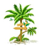vcgc palm 5k logo.png