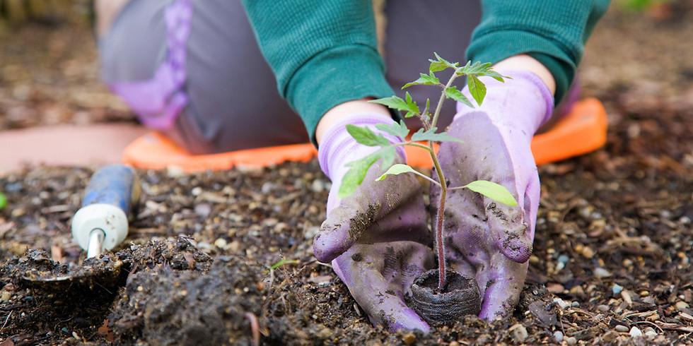 CEREMONIAL TREE PLANTING EVENT