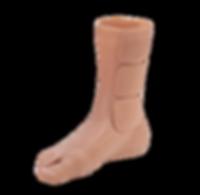 pg3_partialfootprosthesis.png