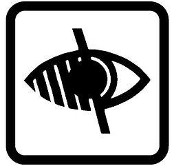 blind_logo.jpg