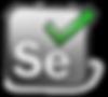 Formation Certification Selenium