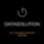 logo-2353_datasolution.png