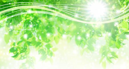 """第4回【日常の中に""""自然""""をもたらす】"""