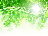 光とグリーン(大).jpg