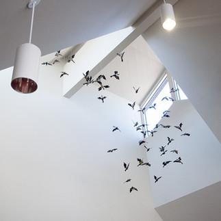 oiseau5-1024x640.jpg
