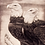 Thumbnail: Double Eagle by Dennis Curry