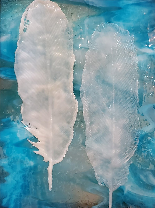Coastal Feathers