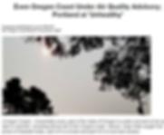 Smoke Article.PNG