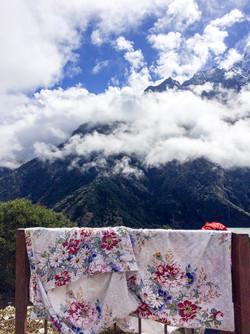 FLORAL, The Himalayas