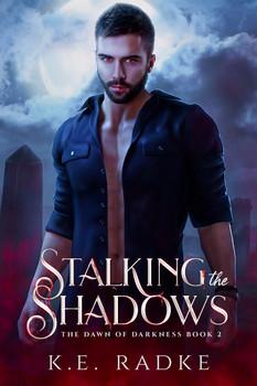 Stalking the Shadows - K.E. Radke.jpg