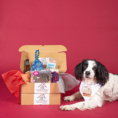 Its Your Gotcha Day! Box