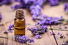 zen lavender .jpg