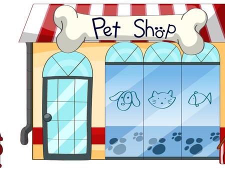 Marketing digital para Petshop; o que são necessários para uma boa estratégia?
