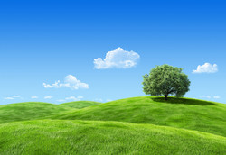 background-landscape.jpg