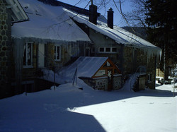 Les Mésanges l'hiver