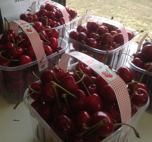 Cherry Punnets