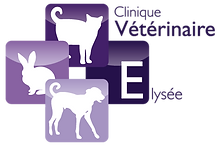 Clinique Vétérinaire Elysée