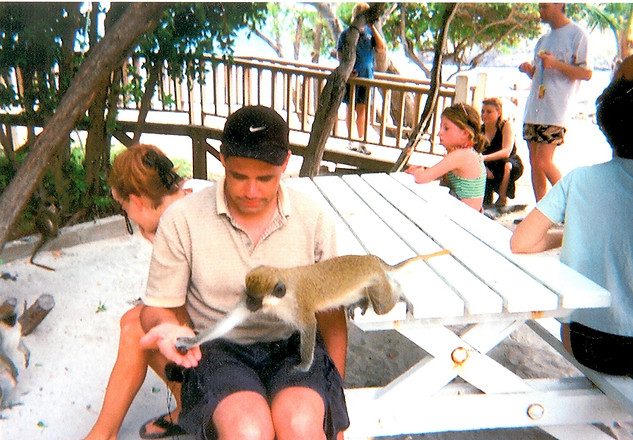 Monkey Business in St. Lucia