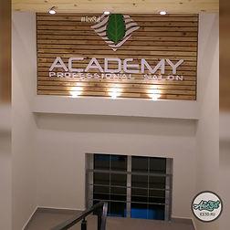 Академи лого 2.jpg