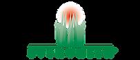 evergreen-logo.webp