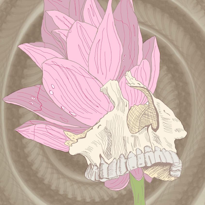 skulllily