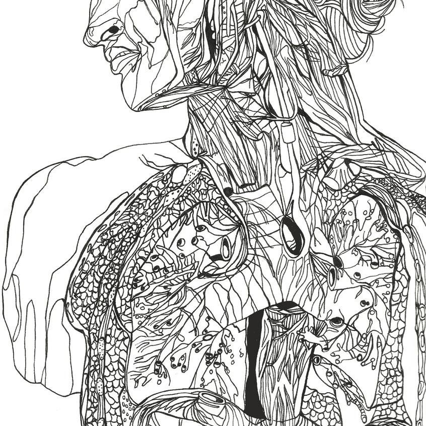anatomicalman2