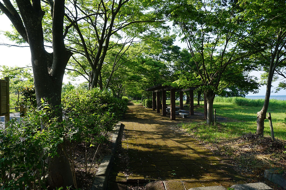 針江浜園地