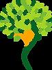 PANAM_TRANSPARENT_TREE.png