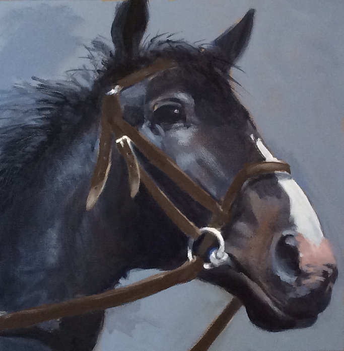 Horse head 26.4.2020.jpg