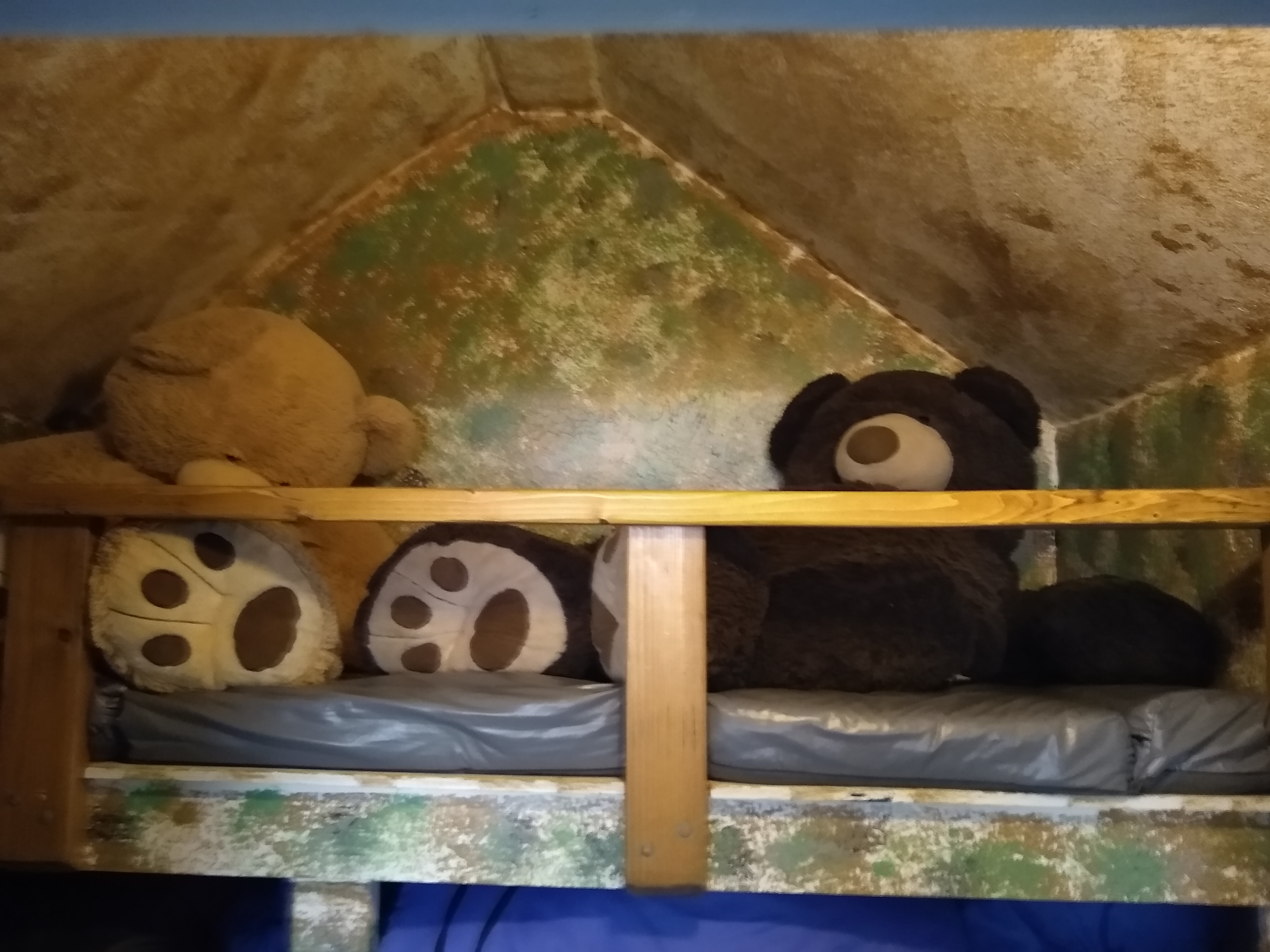 2020-11-05 Beast Bear Cave (3)