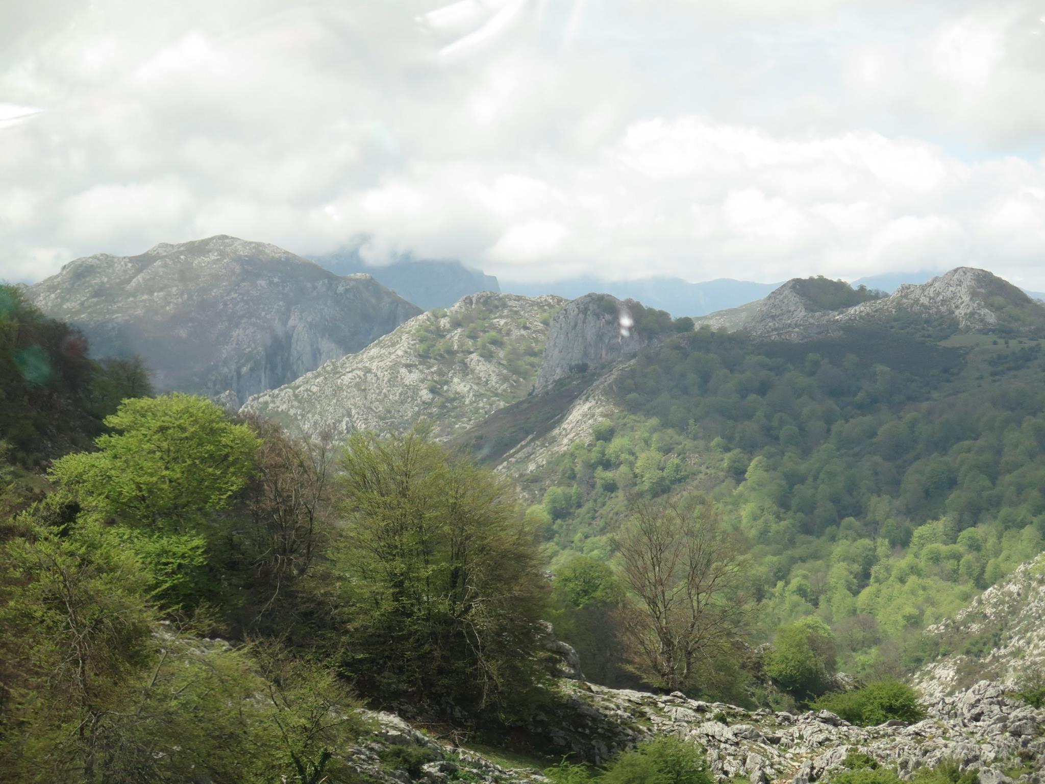 2017.05.2 y3 - Viaje Covadonga Sector Hnos. Mayores (22)