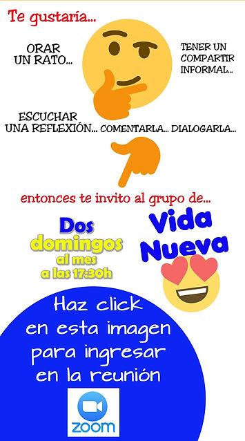 VDNV INVITACIÓN ZOOM.jpg