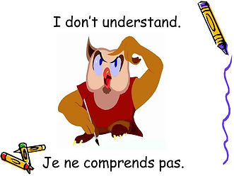I+don't+understand.+Je+ne+comprends+pas.