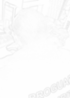 proguard filigranne noir 3.png