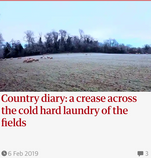 A crease across the cold hard laundry of the fields. 6 Feb 2019