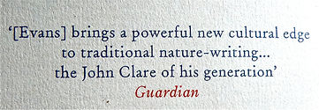 Book review Field Notes From The Edge by The Guardian