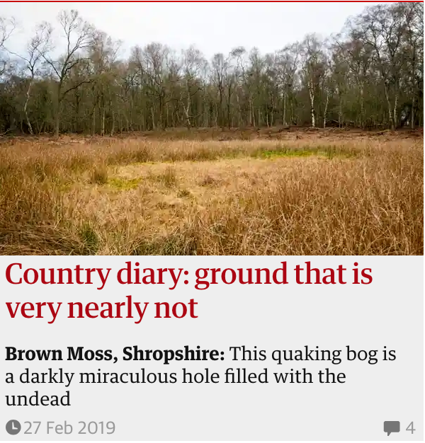 Ground that is very hearly not Guardian Country Diary 27 Feb 2019