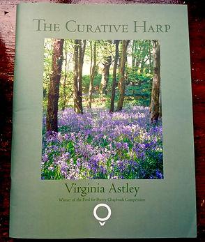 The Curative Harp by Virginia Astley